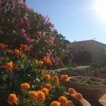 Garden Tabor