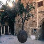 Hanging tree Tel Aviv