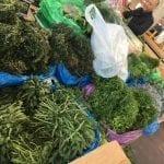 fresh vegitables market